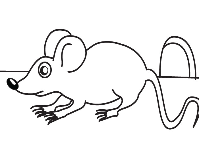 coloring mouse - Coloring Picture Of A Mouse