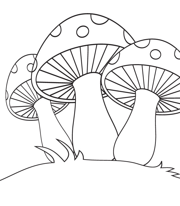 coloring pages mushrooms - photo#3