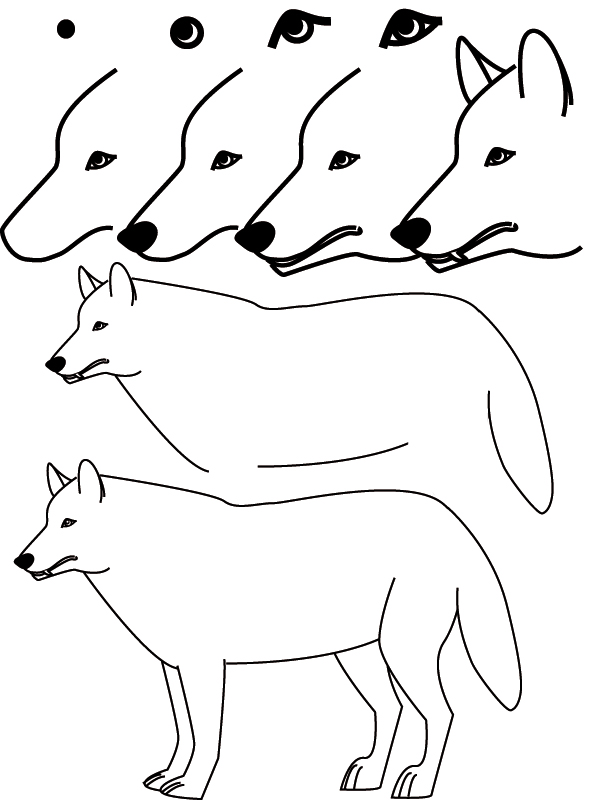 Drawing wolf - Loup dessin facile ...