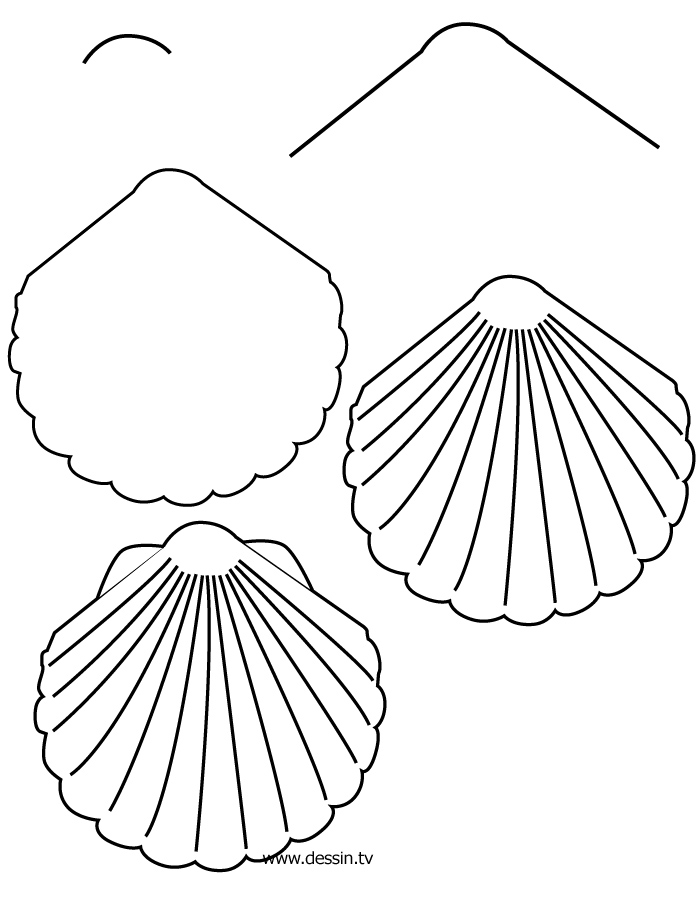 Drawing shell