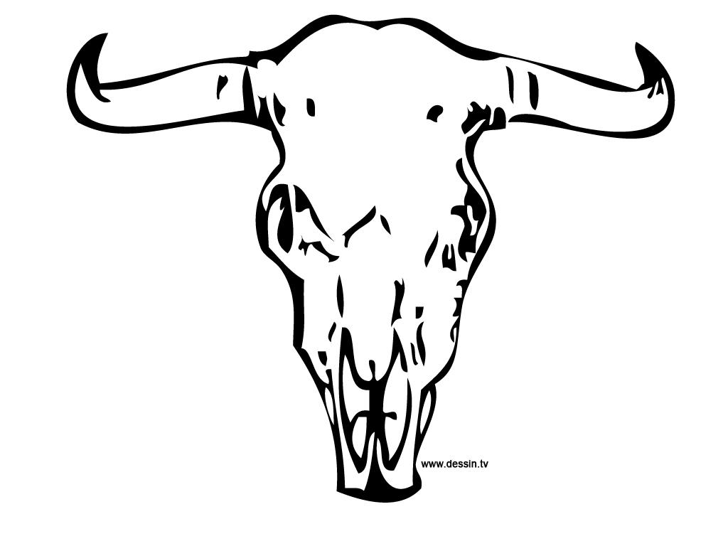 coloring buffalo-skull