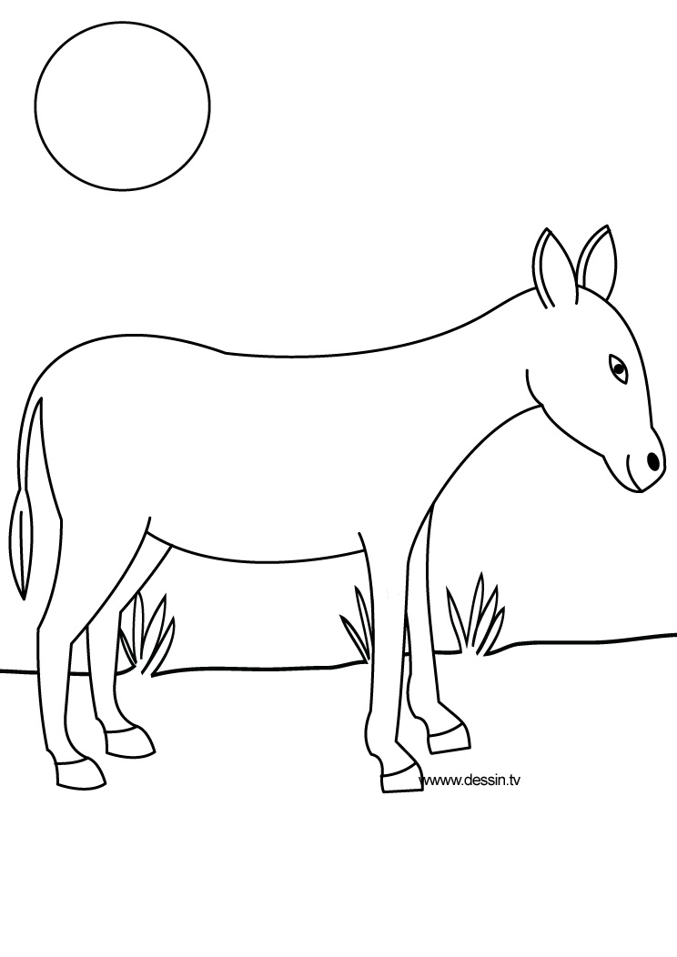 Coloring donkey for Donkey coloring page
