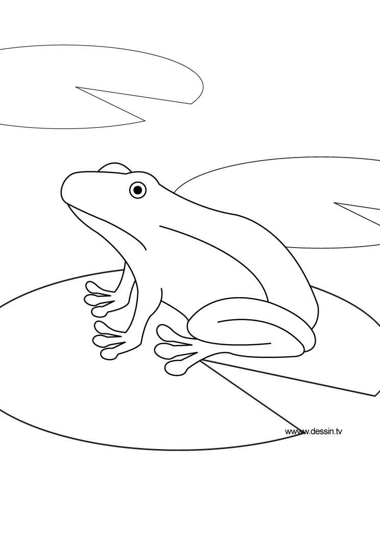 Animals coloring in the pond coloring pages - Animal dessin ...