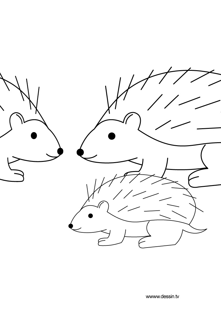 free coloring pages of hedgehog