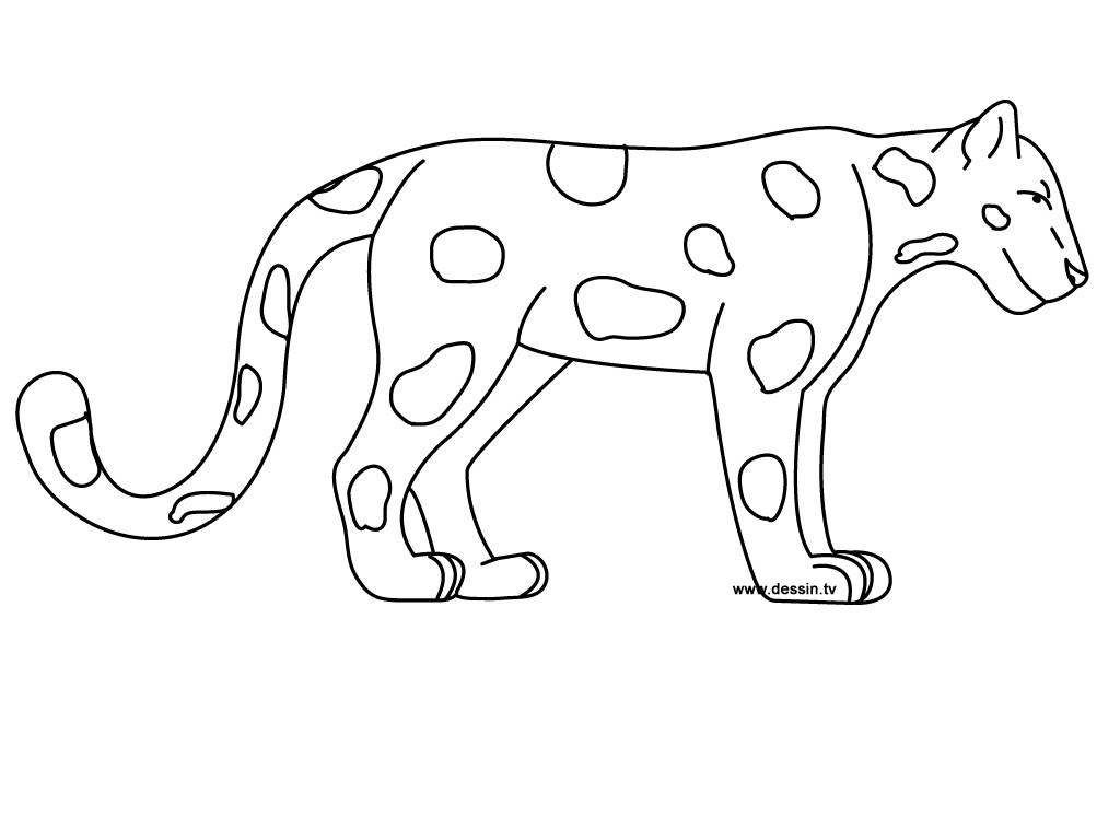 coloring pages jaguars - photo#13