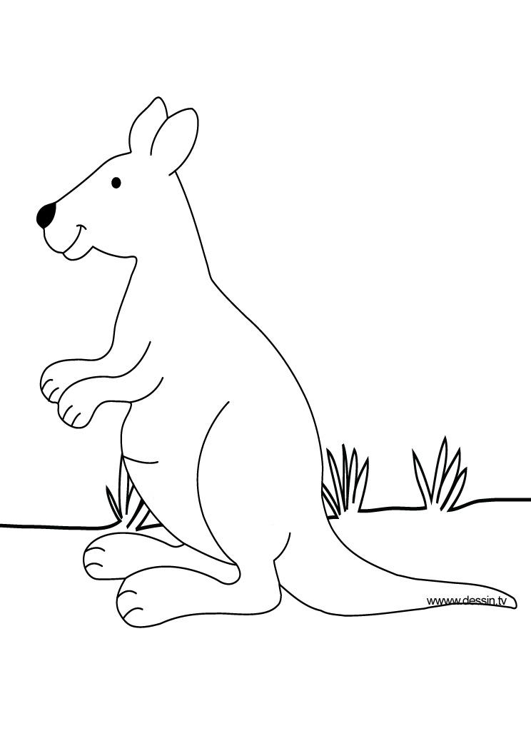 kangaroo footprint coloring pages - photo #40