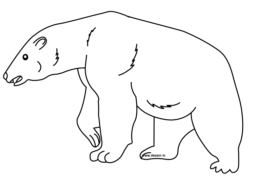 Polar bear polar bear printable new calendar template site for Coloring pages polar bear