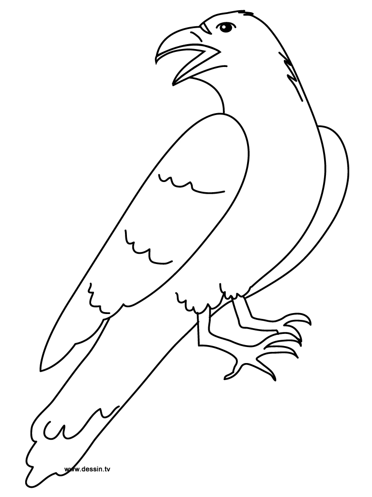 Coloring raven for Raven coloring pages