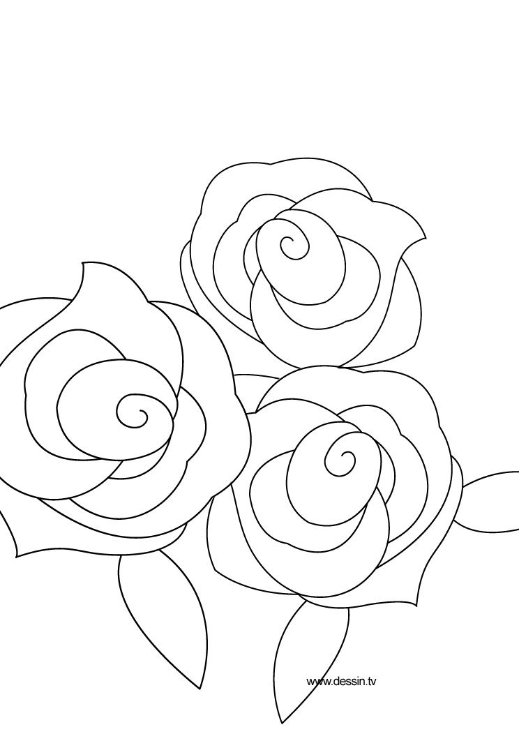 Modern Coloring Pictures Of Roses Ideas