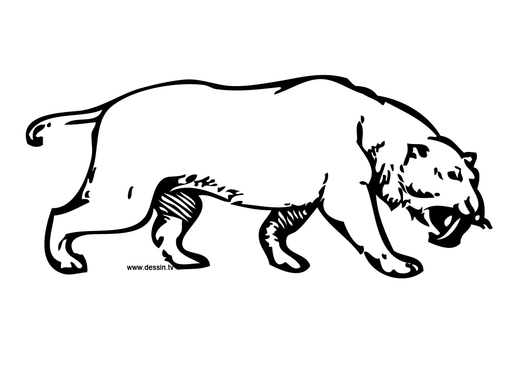 sabertooth cat coloring pages - photo#13