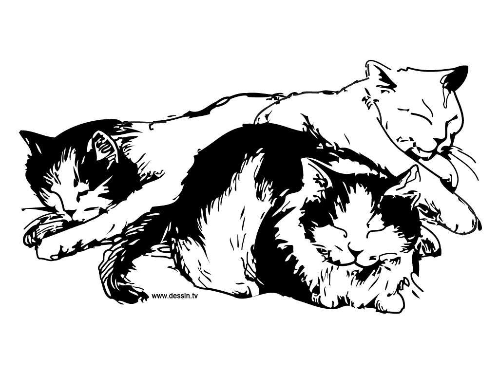 Free Coloring Pages Of Sleeping Cat