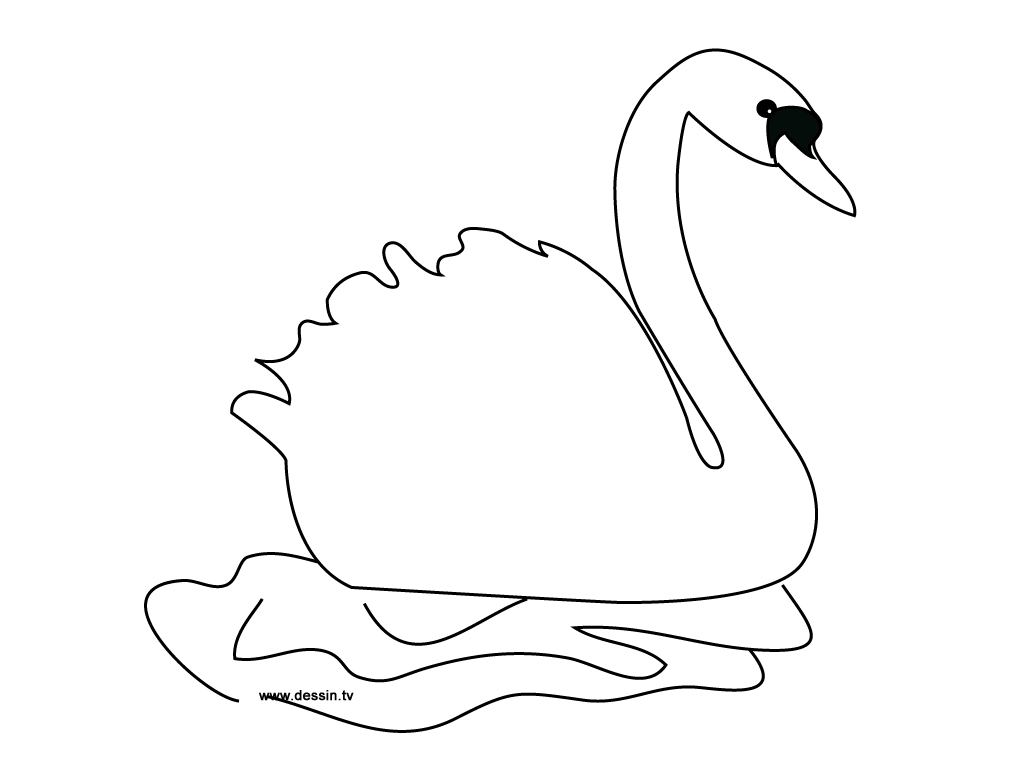 swan pages coloring - photo#15