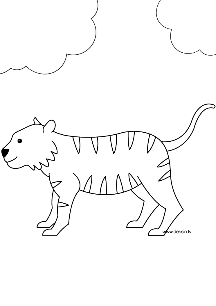 saber tooth tigers coloring pages - photo#41