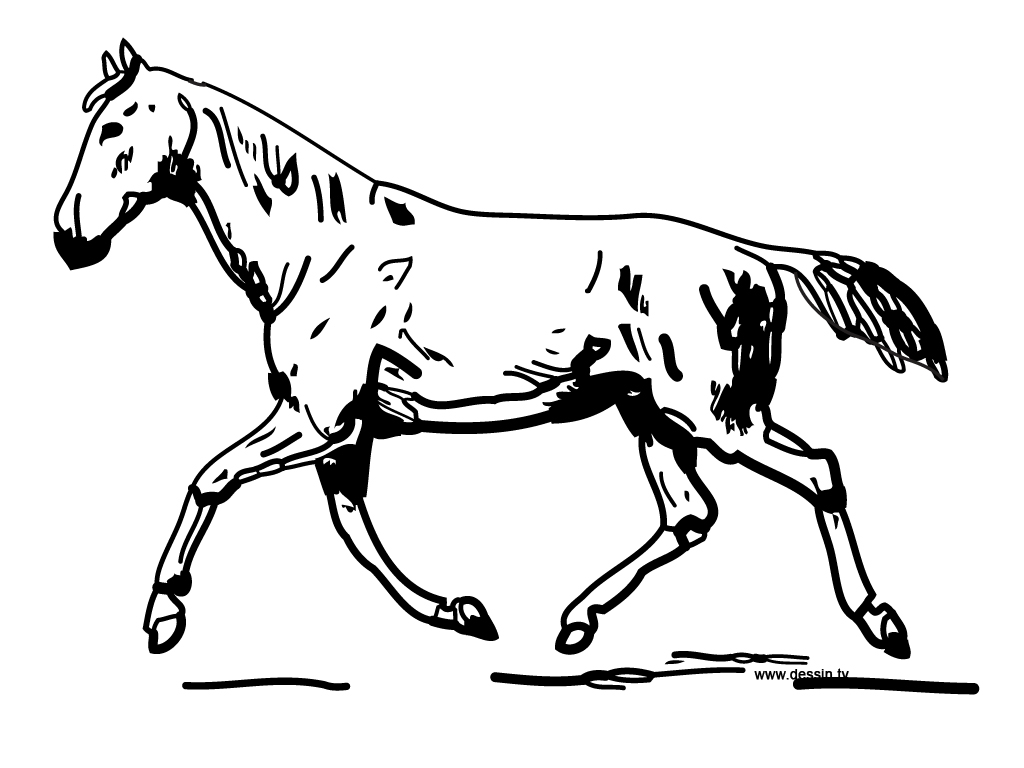 coloring trotting-horse