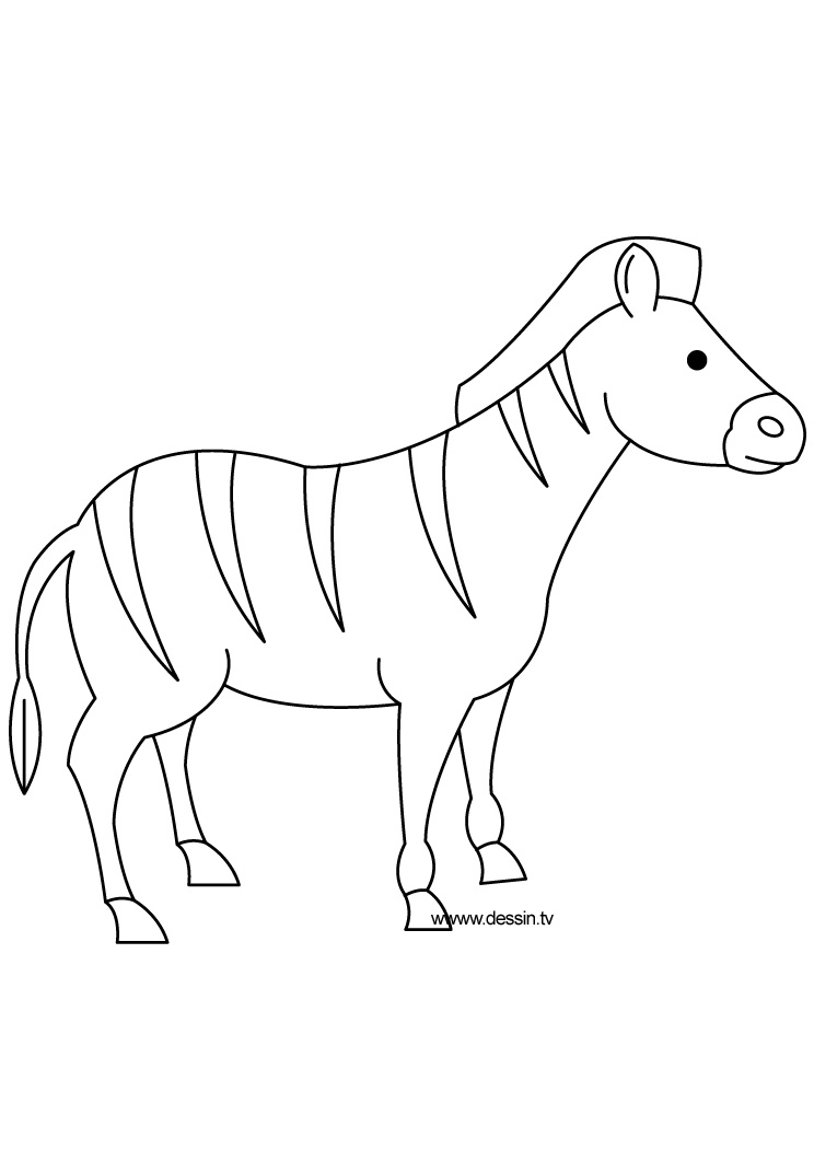 Sketch Of Zebra Without Stripes Coloring Pages Zebra Without Stripes Coloring Page