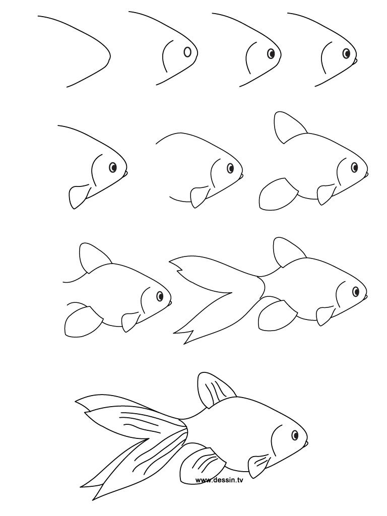 learn how to draw a goldfish with simple step by step instructions