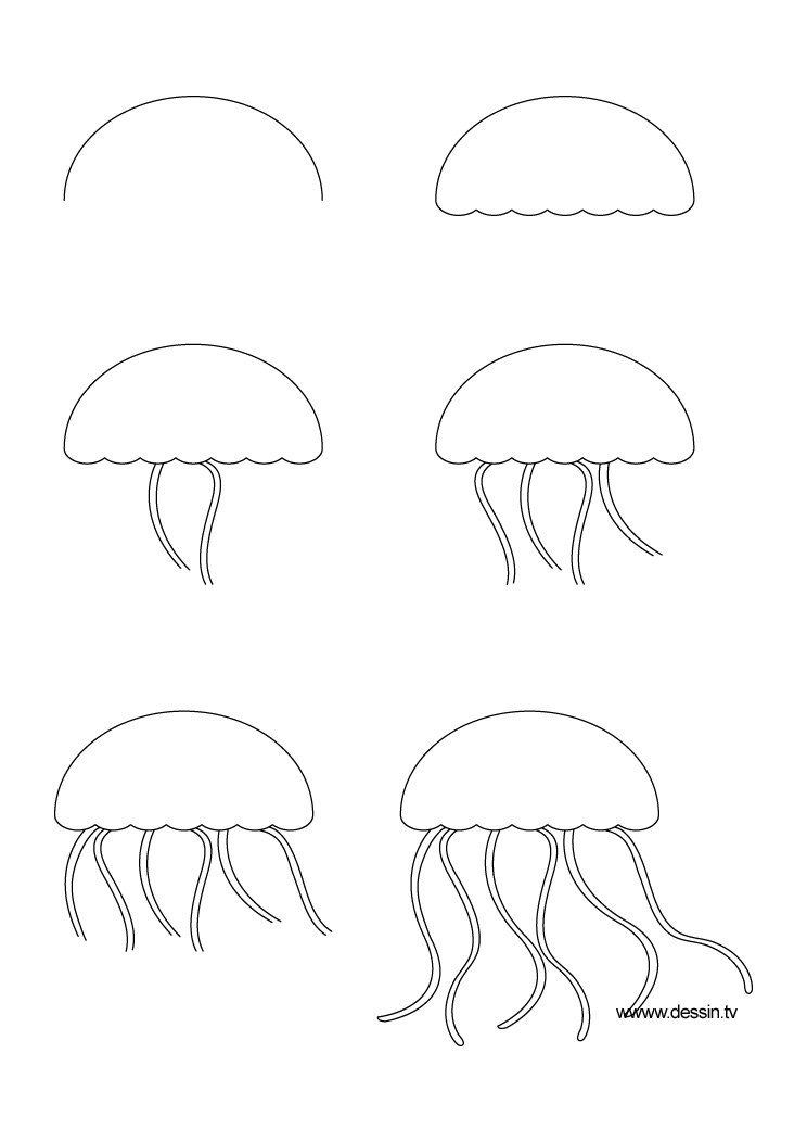 drawing jellyfish