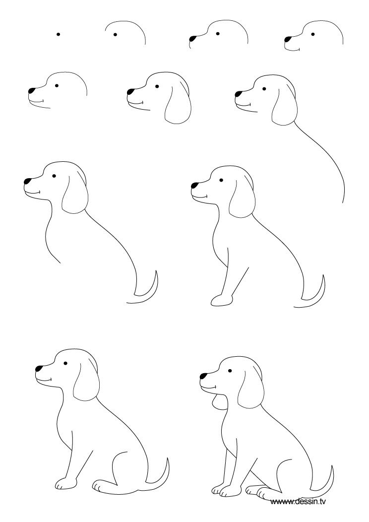 Drawing Puppy
