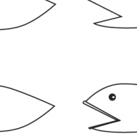 Drawing fish