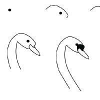 Drawing swan