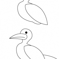 Drawing seagull