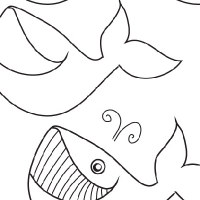 Drawing whale
