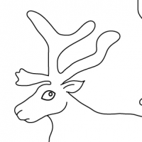Drawing reindeer