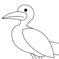 Coloring seagull