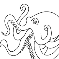 Drawing octopus