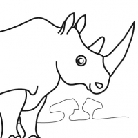 Coloring rhinoceros