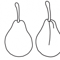 Drawing pear