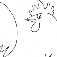 Drawing rooster