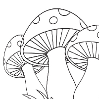 Coloring mushroom